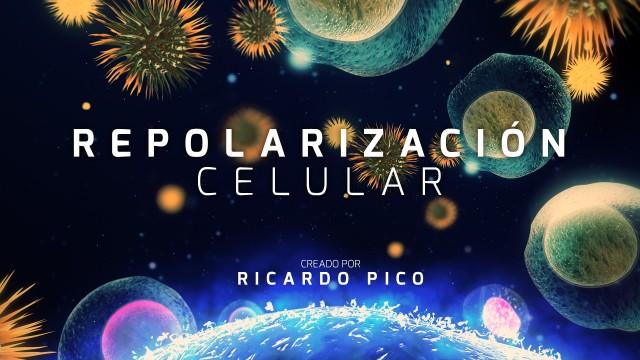 Repolarización Celular