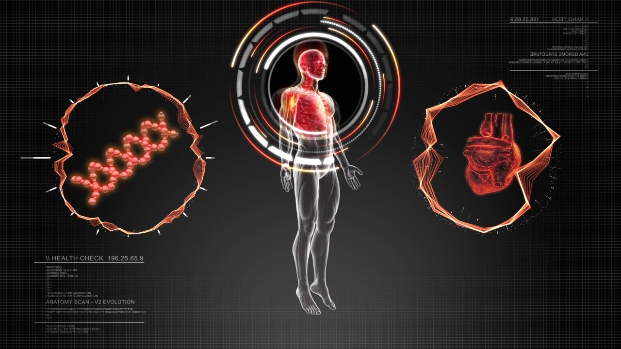 Advanced Human Anatomy Spin With Technological Interface Scan In 3d