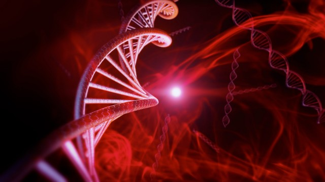 Red DNA Strand in Macro Zoom