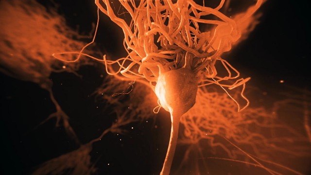 Realistic Neurone synapse network 3D animation with infrared