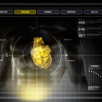 Human Heart X-Ray Scan Interface