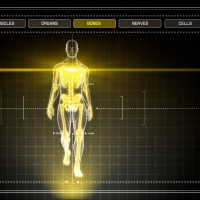 3D Human Walking on Yellow Digital Interface
