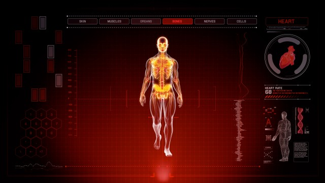Red Futuristic Interface of Full Body Scan with Human Anatomy of Muscles, Bones and Organs
