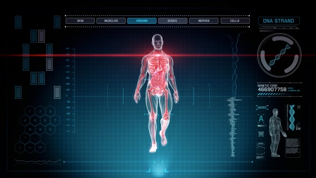 Blue Futuristic Interface of Full Body Scan with Human Anatomy of Muscles, Bones and Organs