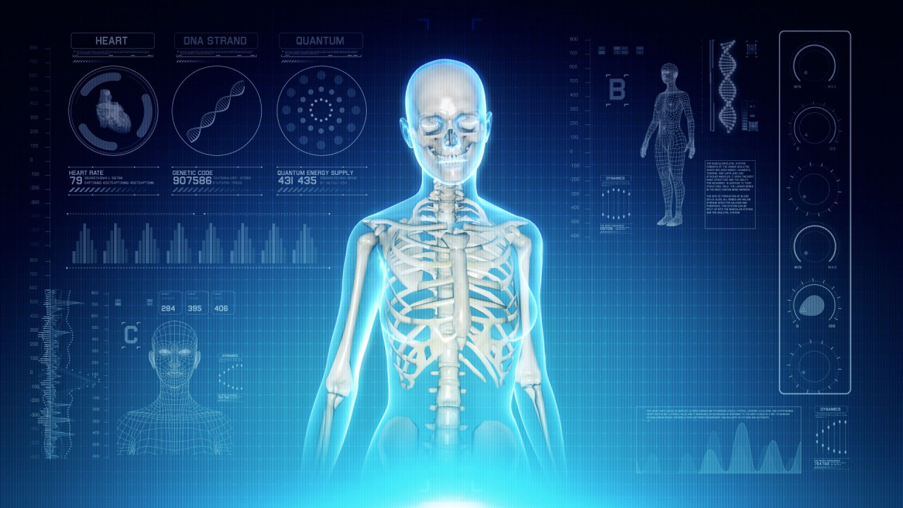 Futuristic Interface Display Of Female Body Scan With Human Skeletal