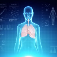 Female Respiratory System Anatomy on Virtual Futuristic Blue Touch Interface