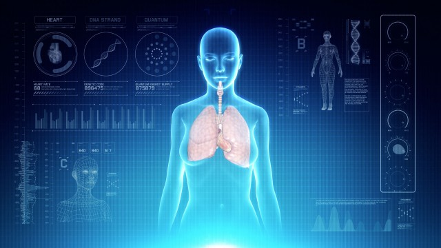 Female Respiratory System Anatomy on Virtual Futuristic Blue Touch Interface