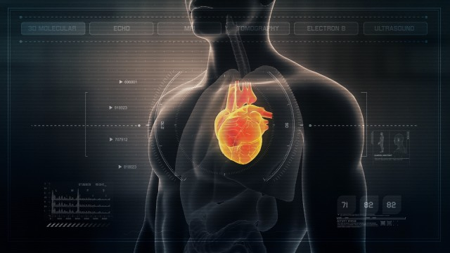 Anatomy of Human Male Heart on Futuristic Medical Interface dashboard. Seamless Loop.Animation.
