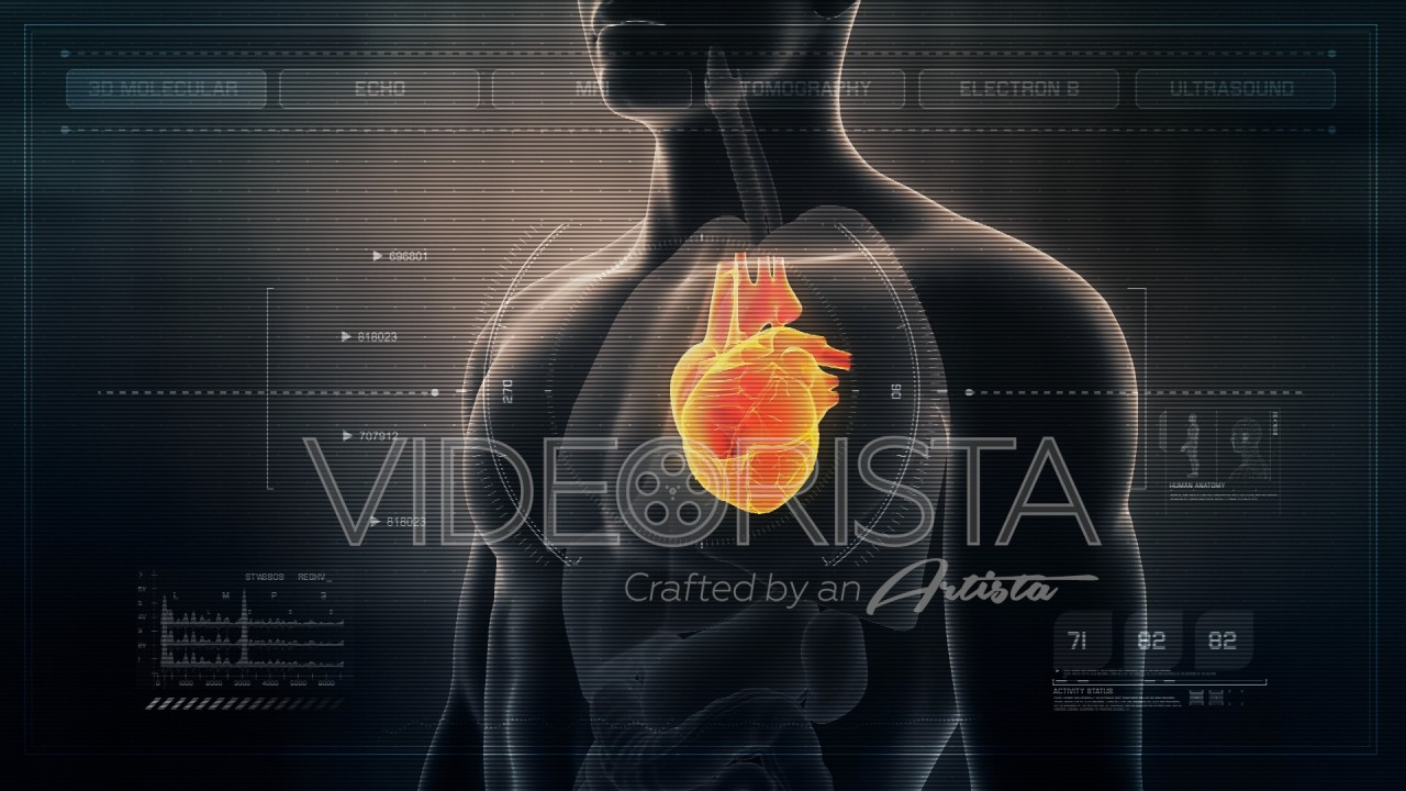 Futuristic Interface Display of Human Male Heart rotating on medical ...
