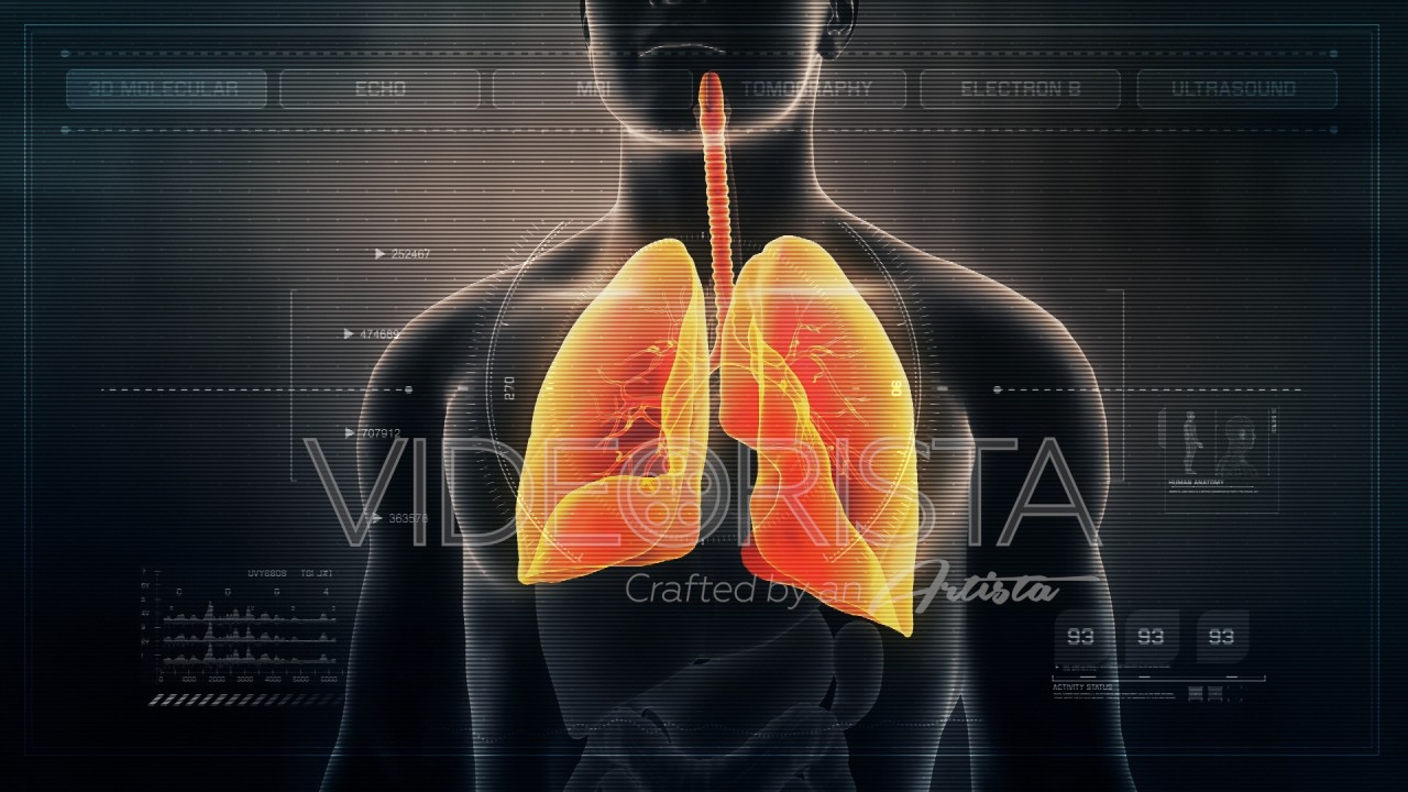 Futuristic Interface Display Of Human Male Respiratory System On